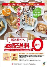 宇都宮餃子配送無料ポスター.jpg